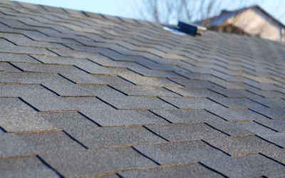 4 Best Types of Roofing to Consider